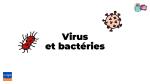 Virus et bactéries. Vidéos pédagogiques pour les enfants