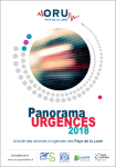 Panorama Urgences 2018. Activité des services d'urgences des Pays de la Loire